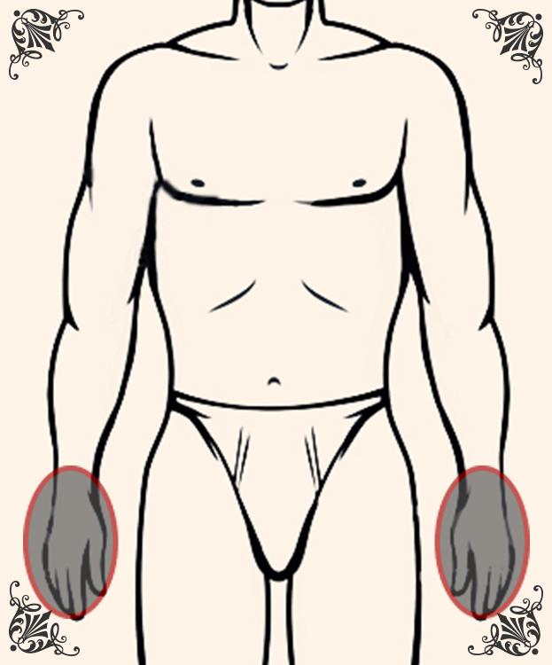 指先・手の甲(両手)の脱毛